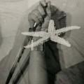 Etoile de mer (frame). Mise-en-scène e photographie: Man Ray, Assistant opérateur Jacques-André Boiffard