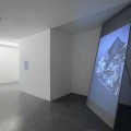 Joe Clark. Shallow Pool. Installation view.