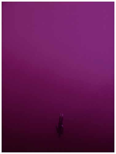 © Francesca Rivetti. Breath Keepers (2011-2012)