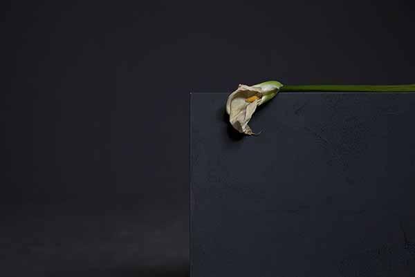 © Giulia Marchi. La mort de Marat