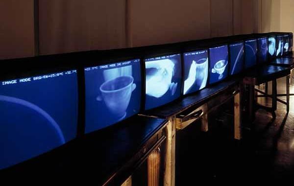 © Studio Azzurro. Il giardino delle cose. Videoambientazione per immagini a infrarossi 1992. Milano, Triennale, XVIII Esposizione Internazionale
